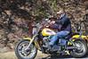 Mt _Cheaha_State_Park_Al_130-330_3122011_007