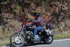 Mt _Cheaha_State_Park_Al_1030_200_4022011_005