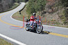 Mt _Cheaha_State_Park_Al_200_300_4032011_009