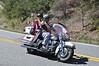 Mt _Cheaha_State_Park_Al_200_300_4032011_003