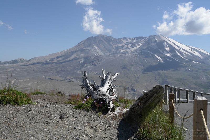 That fallen tree points to its root cause problem: 500m of Mt. St. Helens' summit are missing since the explosion on May 18th 1980.