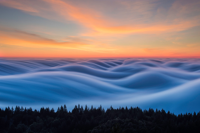 Original Fog Waves