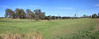 Farm Land From Mudgeeraba Road & The Pacific Highway Dec 14th & 15th  2012 (1)