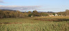Farm Land From Mudgeeraba Road & The Pacific Highway Dec 14th & 15th  2012 (18)