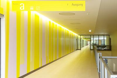Farbwand Obergeschoss Westteil. Foto: Burghard Müller-Dannhausen