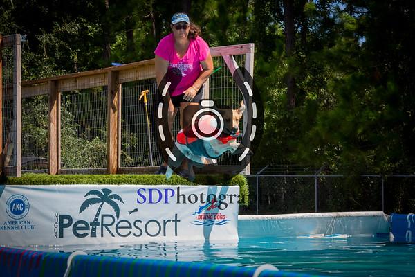 Mugu's Pet Resort's Dock Diving Competition