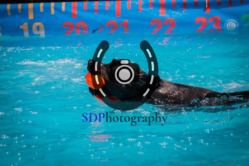 2T4A8061.jpg