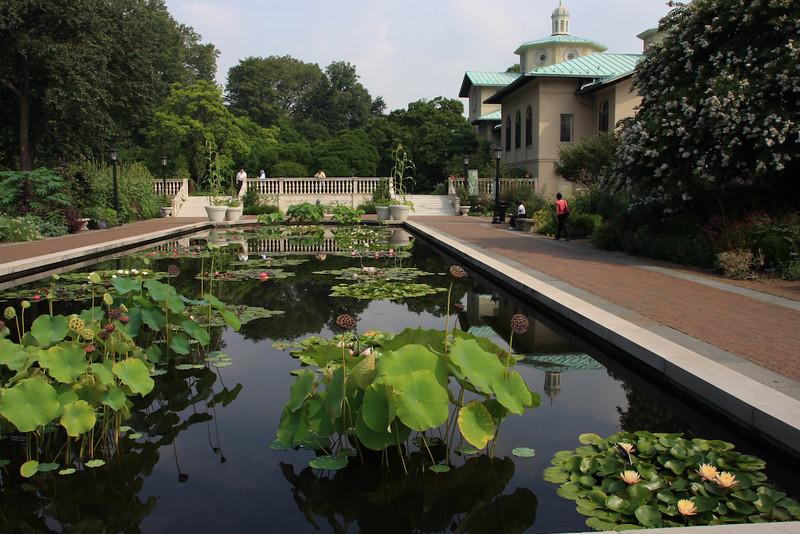 Brooklyn Botanic Garden visit before the cruise