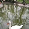 Ankara<br /> Kuğulu Park  (Swan Park)