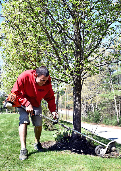 Andrew Muir 24 , owner of Muir Landscaping, doing edge trimming at a home in Pelham NH. SUN/ David H. Brow