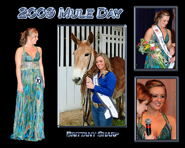 MD09Q- Brittany Sharp