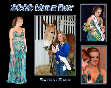 MD09Q- Brittany Sharp
