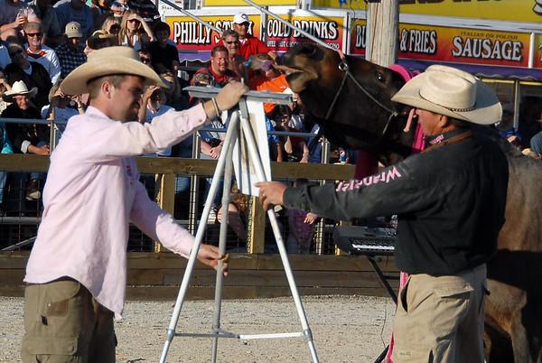 2010 Mule Day Amazing Grace