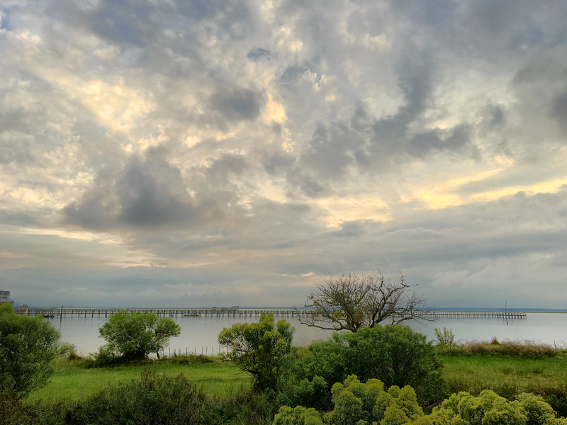 Chincoteague Island, VA