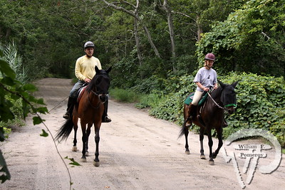 IN THE SADDLE Brian and Mary Hastings ride their horses Rosie and Rainbow  through Bell's Neck Conservation Area.  Harwich Oracle August 22, 2012 front page