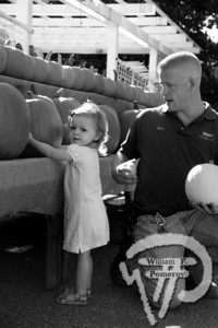 Twenty-month-old Kendall of Plymouth picks out a 35-pound pumpkinunder  supervision of Agway associate Brian Smith. The Cape Cod Chronicle OCTOBER 28, 2010page 45