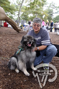 """Graham Crocker, keeshond,  next to Brenda Bouchard.  SEEN ON SCENE:  DogFest in Dennis  Canine Companions for Independence inaugural DogFest attracted paws full of four-legged friends  and their masters to Johnny Kelley Park in South Dennis this past Saturday afternoon. To learn more about  the organization """"capable of transforming the lives of people with disabilities"""", please visit them on-line  at cci.org   12 of 18   WickedLocal.com/CapeCod October 7, 2013 COMMUNITY NEWSPAPER COMPANY"""
