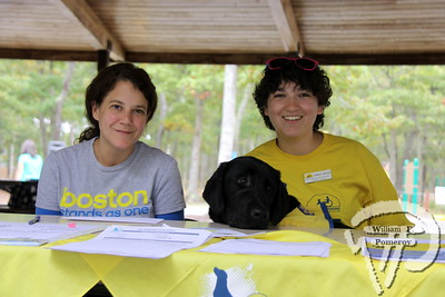 """Fineas, lab-golden mix,  accompanies Katie Tracanna and Danielle Drazen in welcoming donations.  SEEN ON SCENE:  DogFest in Dennis  Canine Companions for Independence inaugural DogFest attracted paws full of four-legged friends  and their masters to Johnny Kelley Park in South Dennis this past Saturday afternoon. To learn more about  the organization """"capable of transforming the lives of people with disabilities"""", please visit them on-line  at cci.org   10 of 18   WickedLocal.com/CapeCod October 7, 2013 COMMUNITY NEWSPAPER COMPANY"""