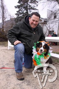 Joe and Sophie Yukna  of Mashpee. SEEN ON SCENE:  Cape Cod St. Patrick's Day Parade  Large crowds were drawn along both sides of Route 28 this past Saturday  in West Dennis spilling into South Yarmouth, all to help celebrate  the 8th annual Cape Cod St. Patrick's Day Parade.   12 of 21  WickedLocal.com/CapeCod March 11, 2013 COMMUNITY NEWSPAPER COMPANY