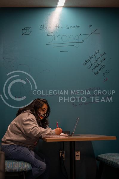 (Sydnee Shive I Collegian Media Group).