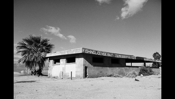 Salton Sea, Dying Sea - BW