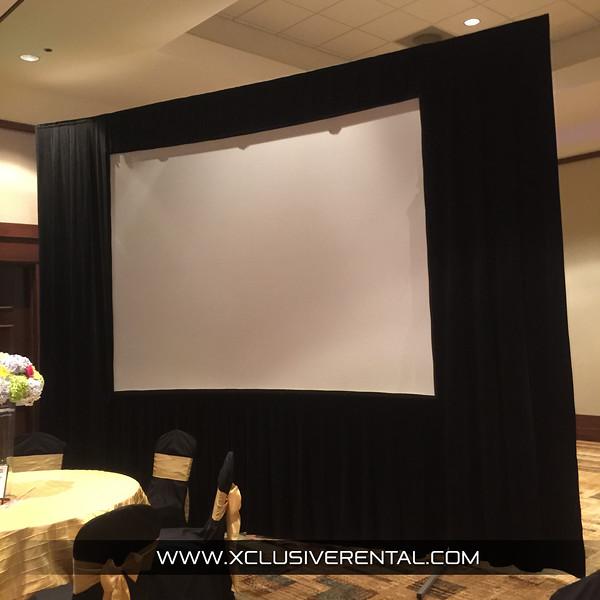 5' x 8' Projector Screen