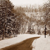 snow wolf hollow road sepia