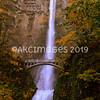 AKC_5893