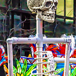 Skull on a Pipe