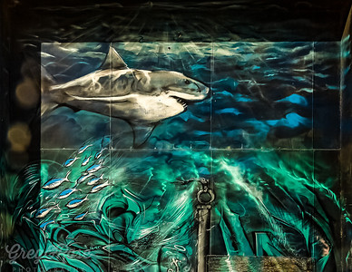 Mural of sea life Featuring the Great White Shark