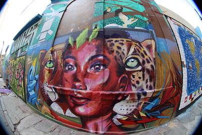 Murals, Graffiti, Street Art.......Rio de Janeiro