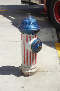 Fire Hydrant outside the quaters of Engine 81 and Tower Ladder 46