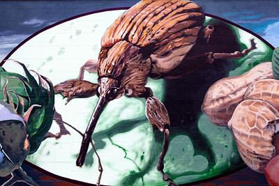 Boll Weevil Mural Enterprise AL_2100