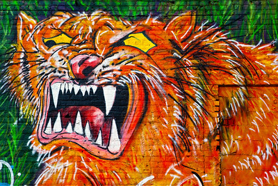 Bengel Tiger Mural Kitty's Sports Bar Cincinnati OH_0297