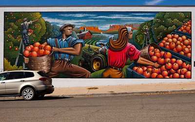 Harvest Time McElmo Canyon Peaches by Artist Brad Goodell Cortez CO_1908