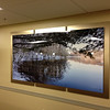 This 8'x4' aluminum print is mounted over three panels of brushed bronze.