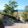 TRAIL TO SECLUDED BEACH - Indiana Dunes State Park, Indiana<br /> <br /> Photographs never quite do the dunes justice, and this one is no exception.  The steep trail looks deceptively flat and easy to traverse, but in reality the significant slope and inches-deep sand make for a challenging climb.<br /> <br /> Indiana Dunes State Park consists of 2,182 acres of varied landscape and more than three miles of beautiful beach along Lake Michigan's southern shore.  <br /> <br /> Dedicated as a state park in 1925, Indiana Dunes contains 1800 acres of woodland with some of the most diversified flora and fauna of the Midwest. Drifting sand hills, peculiar to the dunes region, are the landmarks of this unique Hoosier landscape.<br /> <br /> Large sand dunes, formed over thousands of years, tower nearly 200 feet above Lake Michigan. Vegetation stabilizes some of the sand, allowing for a wide range of animals and plant species to thrive there. The lake also provides habitat for many aquatic species, as well as a constantly changing fishery.<br /> <br /> The park's nature center hosts interpretive programs to educate visitors about the unique ecosystems of the Indiana Dunes. Its beaches welcome swimmers in the summer, and cross-country skiers make use of its trail system in the winter,