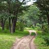 Hwange Trail