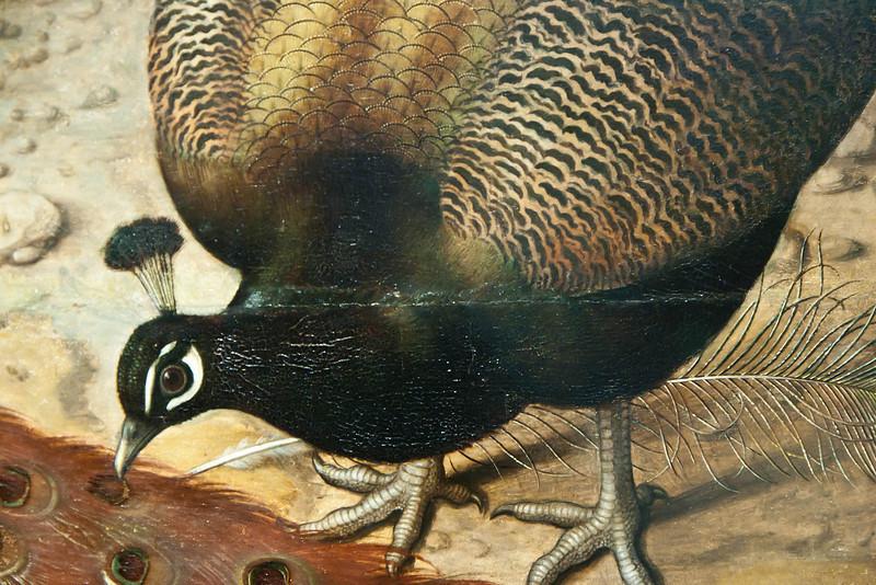 Münster, WLM, Ludger tom Ring d.J.: Drei Pfauen (1566)
