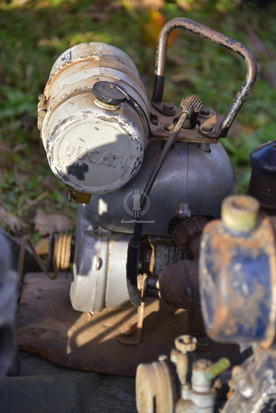 Ducati industrial motor