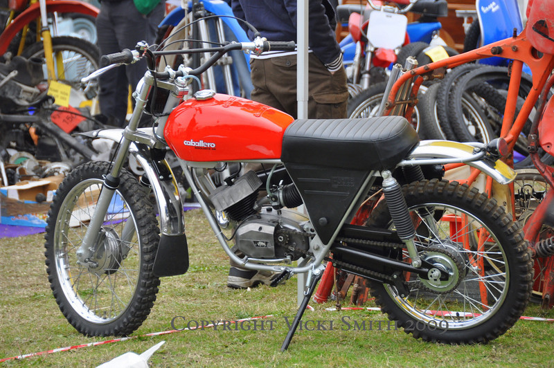 Lots of truly beautiful scrambler style bikes this year