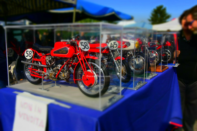 These are here every year. Perfect large scale models, they never fail to attract an admiring crowd