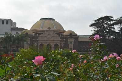 Rose garden outside of the Los Angeles Natural History Museum, CA