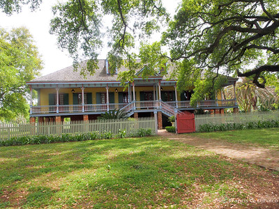Laura Plantation June 2014