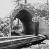 Cobb Valley Bridge