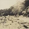 A Camping Trip - 1921
