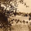 Bagley Ranch