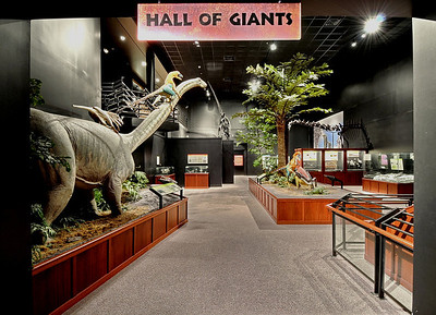 Hall of Giant Dinosaurs; Museum of the Rockies, Bozeman Montana showcases one of the largest collections of dinosaur fossils in the world. Photography by Jim R. Harris