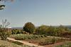 Around Monticello