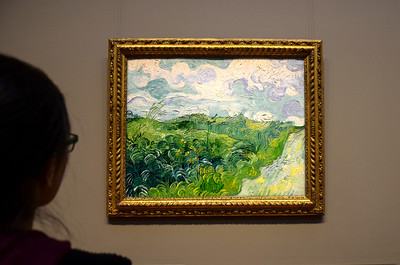 """Vav Gogh, """"Green Wheat Fields, Auvers"""", a recent acquisition at the National Gallery of Art in Washington DC."""